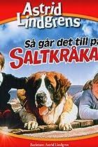 Image of Så går det till på Saltkråkan