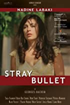 Image of Stray Bullet