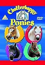 Chatterhappy Ponies