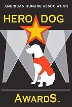 Primary image for 2014 Hero Dog Awards