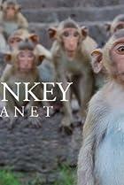 Image of Monkey Planet