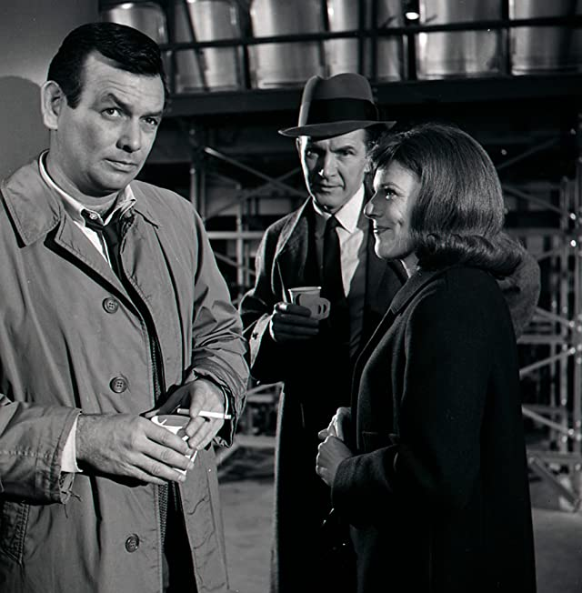 David Janssen, Lin McCarthy, and Jacqueline Scott in The Fugitive (1963)