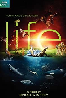 Life (2009-)
