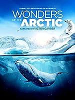 Wonders of the Arctic 3D(2014)