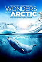 Image of Wonders of the Arctic 3D