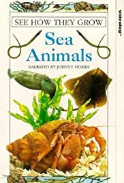 See How They Grow: Sea Animals Poster
