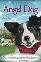 Image of Angel Dog
