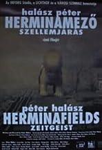 Herminamezö - Szellemjárás