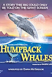 Humpback Whales (2015) Poster - Movie Forum, Cast, Reviews