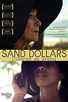 Image of Sand Dollars