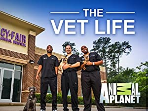 The Vet Life Season 5 Episode 2