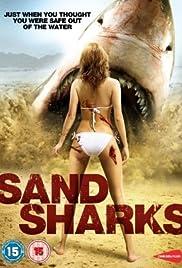 Sand Sharks (English)