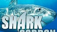 Thresher Sharks