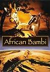 African Bambi