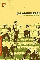 Image of Alambrista!