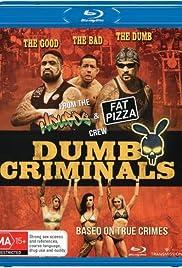Dumb Criminals: The Movie(2015) Poster - Movie Forum, Cast, Reviews