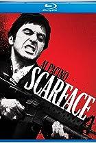Image of The Scarface Phenomenon