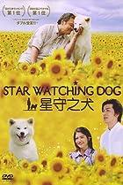 Image of Star Watching Dog