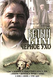 Belyy Bim Chernoe ukho(1977) Poster - Movie Forum, Cast, Reviews