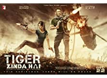 Tiger Zinda Hai Hindi Movie 2017