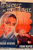 Image of The Secret of Stamboul