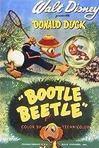 Image of Bootle Beetle