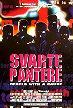 Primary image for Svarte pantere