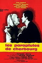 Image of Les parapluies de Cherbourg
