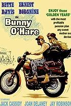 Image of Bunny O'Hare