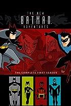 Image of The New Batman Adventures