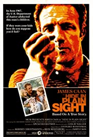 Hide in Plain Sight Poster