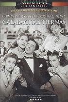 Image of Calabacitas tiernas