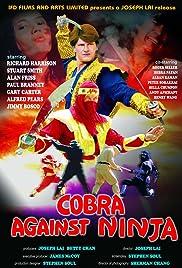 Cobra vs. Ninja Poster