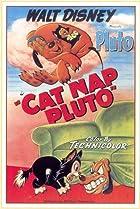 Image of Cat Nap Pluto