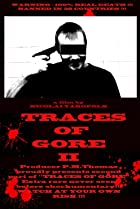 Image of Traces of Gore II