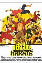 Image of Mr. Hercules Against Karate