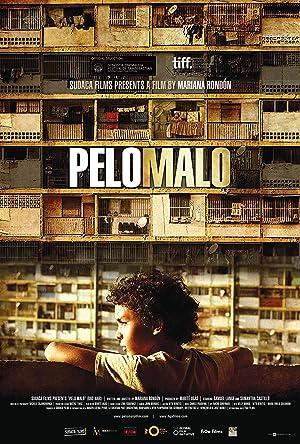 Picture of Pelo Malo