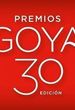 Primary image for Premios Goya 30 edición