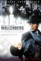 Image of Wallenberg: A Hero's Story