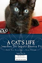 A Cat's Life (2011) Poster - Movie Forum, Cast, Reviews