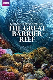 Great Barrier Reef with David Attenborough - Season 1 (2015) poster