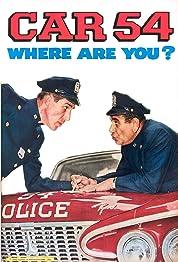 Car 54, Where Are You? - Season 2 poster