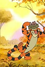 Primary image for The Most Wonderful Thing About Tiggers