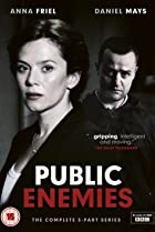Image of Public Enemies