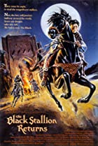 Image of The Black Stallion Returns
