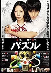 Puzzle (2014)