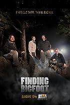 Image of Finding Bigfoot