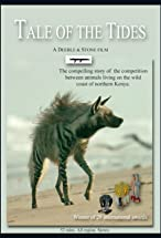 Primary image for Tale of the Tides: The Hyaena and the Mudskipper