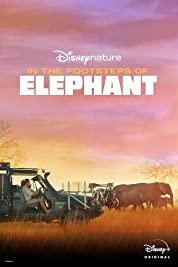 In the Footsteps of Elephant poster