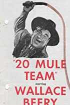 Image of 20 Mule Team